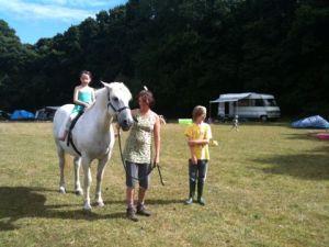 van horse